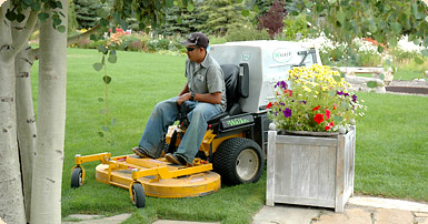 Lawn Care in Jackson Hole